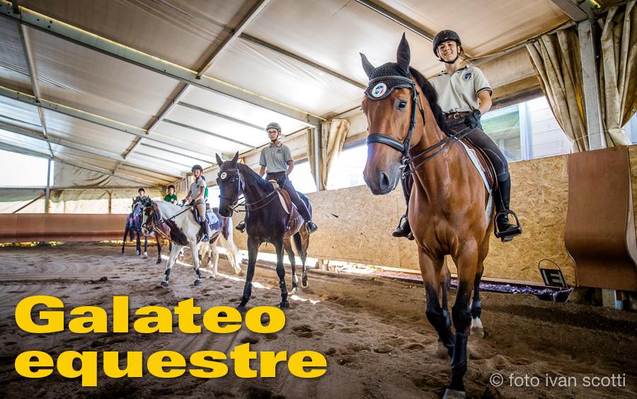 Galateo Equestre Educazione In Sella