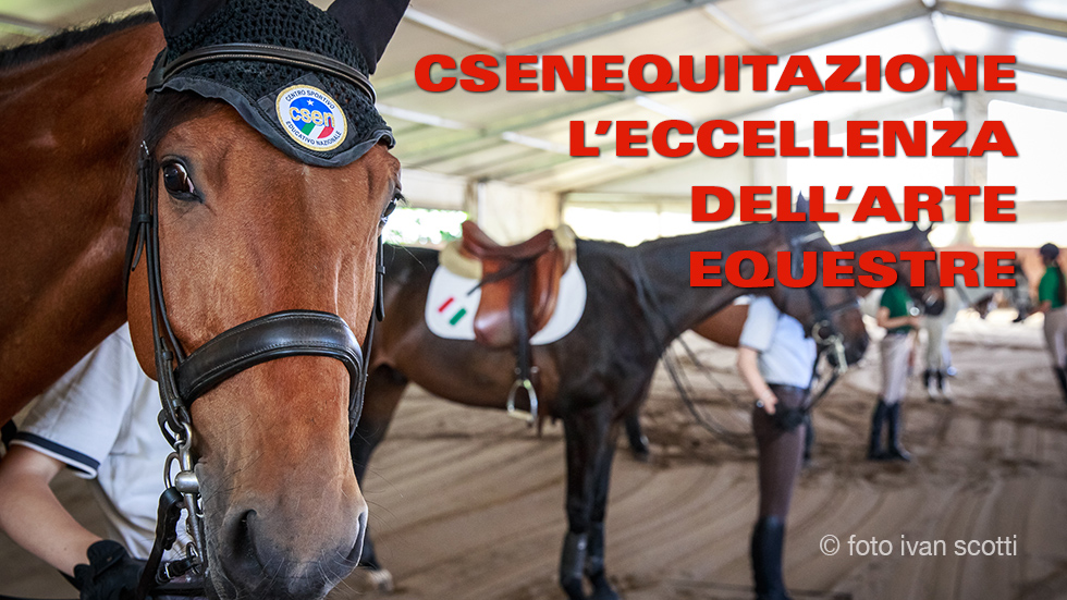 Art Ivan  Equitazione Csen 980px