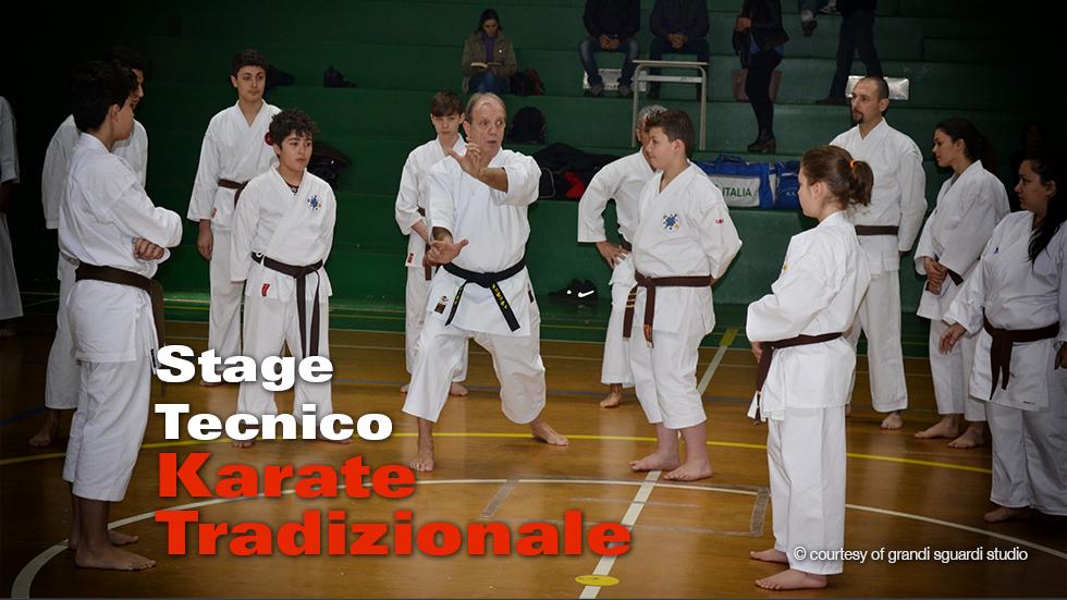 Cop Stage Karate2