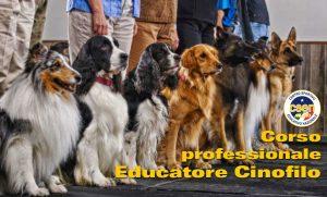 CORSO PROFESSIONALE PER EDUCATORI CINOFILI