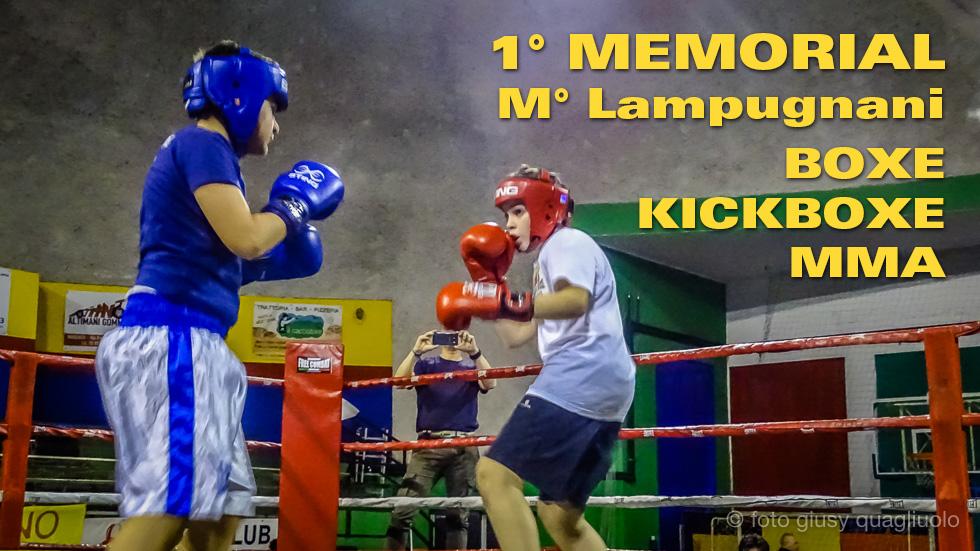 Lampugnani Boxe Mma Kickboxe