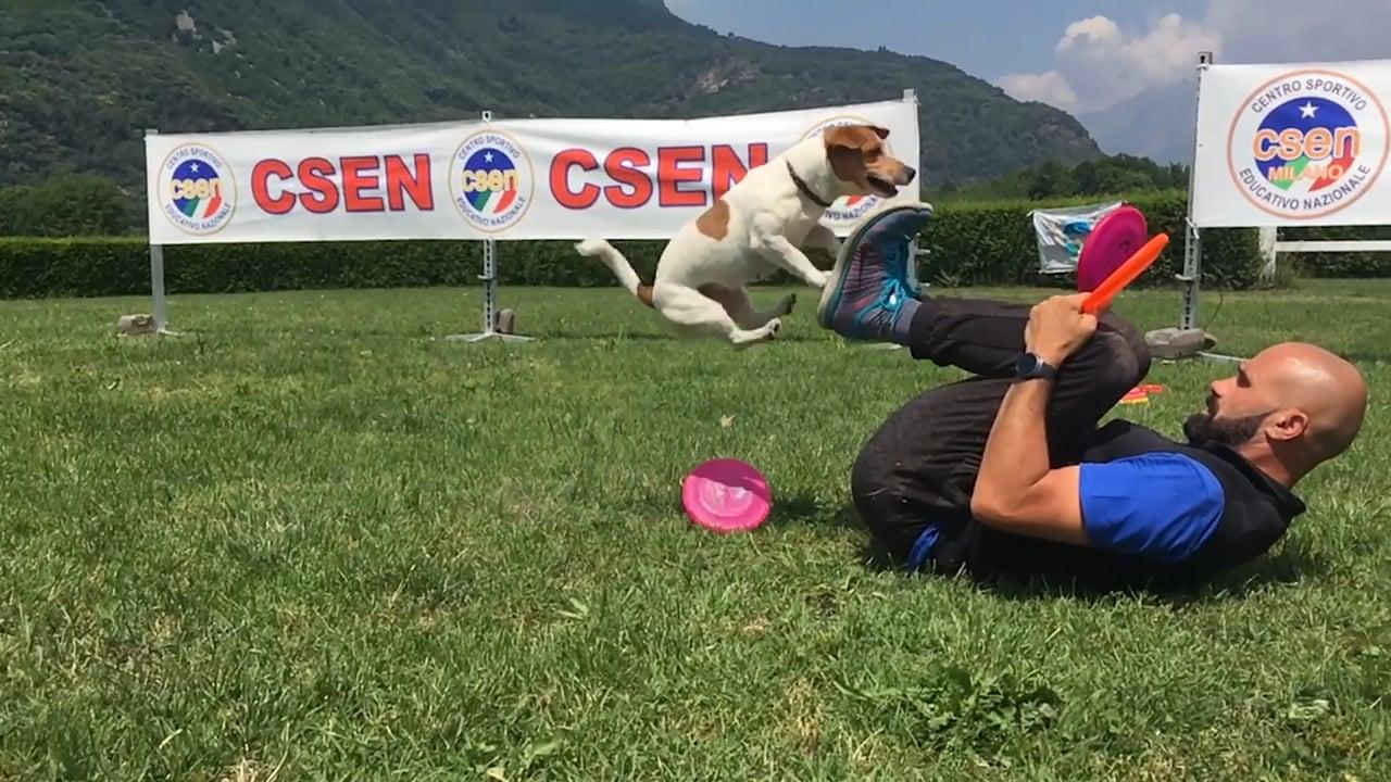 Adrian Stoica Csen Milano Addestramento cani