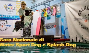 Gara Nazionale di Water Sport Dog e Splash Dog